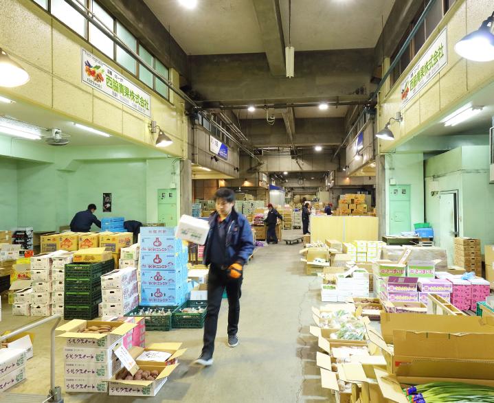名古屋中央卸売市場の様子