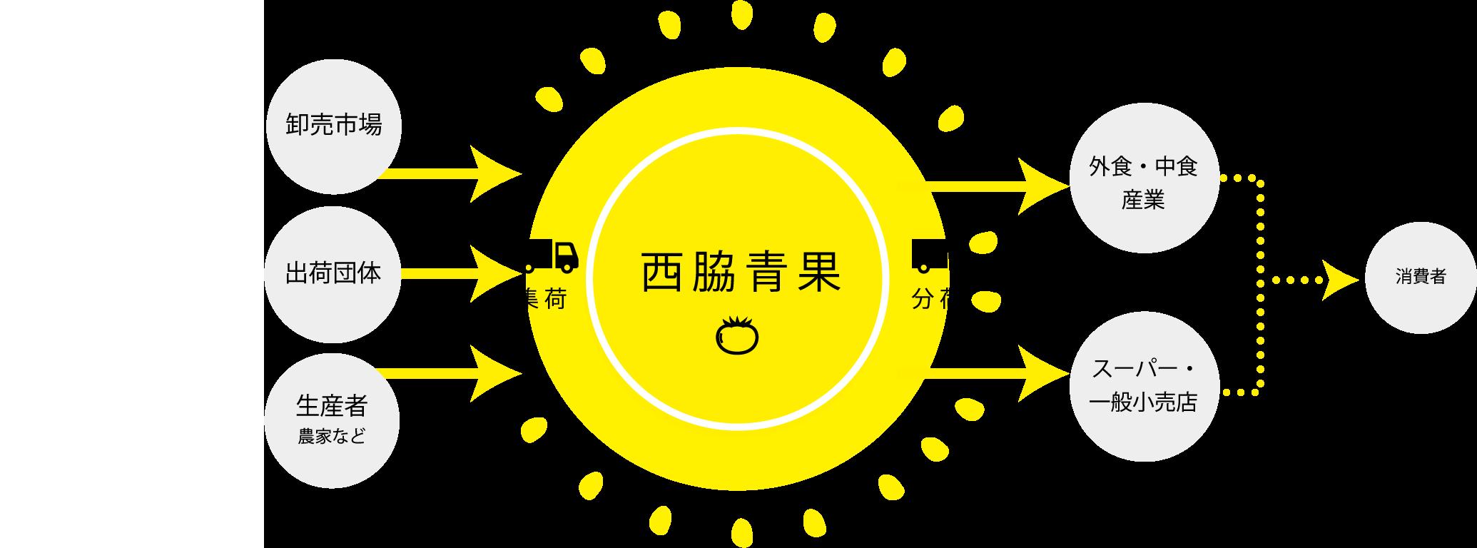 卸売市場・出荷団体・生産者など→集荷→西脇青果→分荷→外食中食産業・スーパー一般小売店→消費者